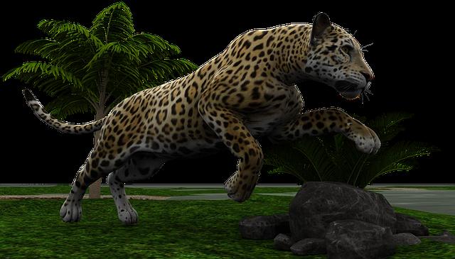 「ジャガー? ヒョウ? チーター?」