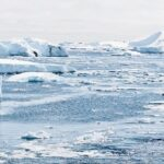 「南極の最高気温は東京の春か、秋くらい」